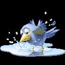 doiseaux-une-piscine-tweet-twitter-eau-icone-4142-128(1)